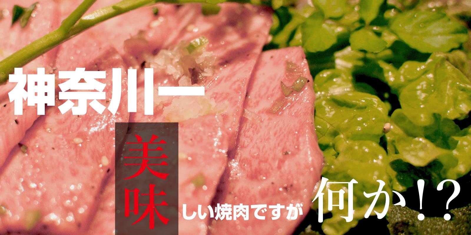 肉問屋直営焼肉 杏樹亭 神奈川一美味しい焼肉
